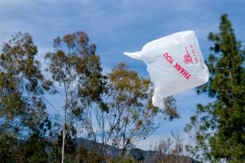 sacchetto plastica