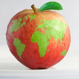 mela mondo