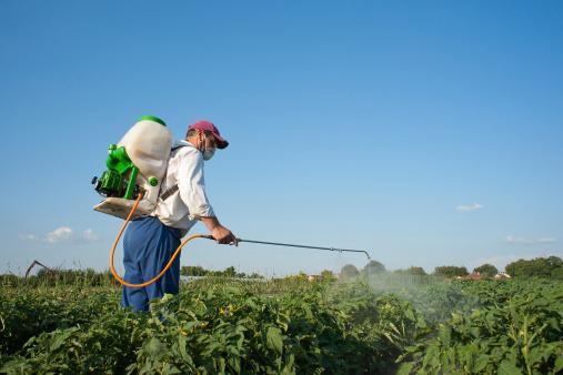 uomo pesticida campo