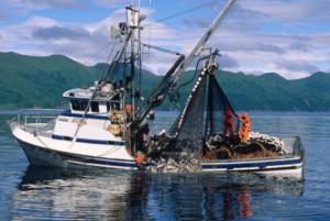 pesca barca vongole