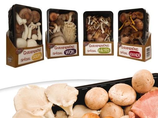 fruitlogistica-funghi