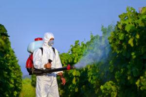 pesticidi Interferenti endocrini