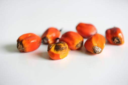 palma olio