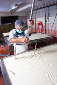 lavorazione del latte produzione di formaggio