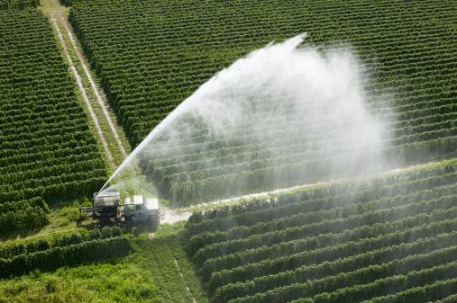 acqua campi irrigazione agricultura