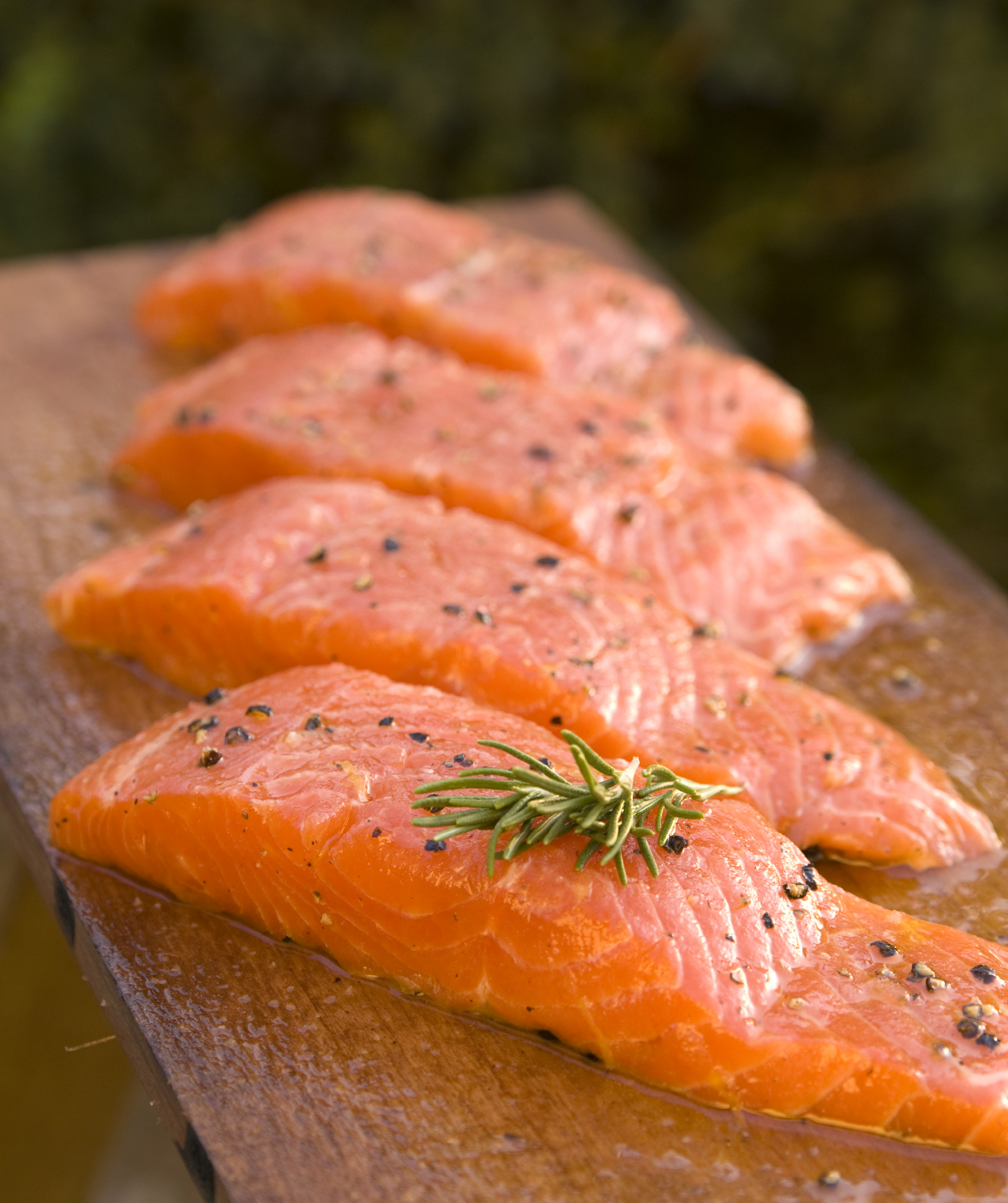 filetti salmone AquaBounty