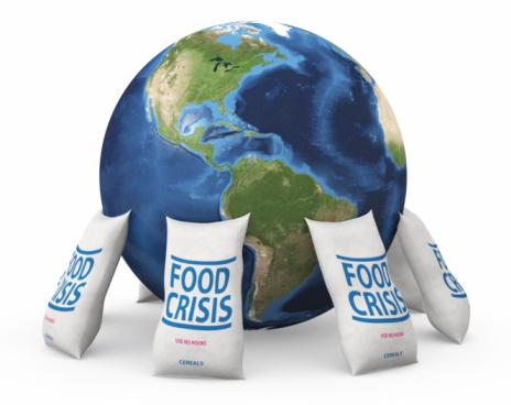 fame food crisis  mondo