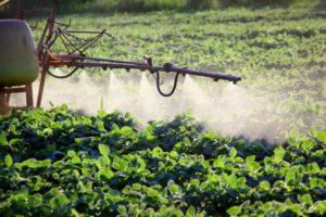 inquinamento pesticidi Glifosato