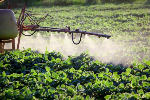 inquinamento pesticidi