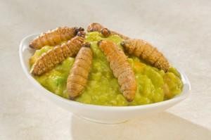 Larva di agave: ingrediente tipico della cucina messicana, qui servito sulla salsa guacamole
