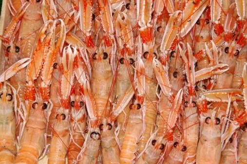 pesce gamberi
