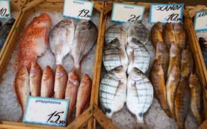 pesce pescheria istamina