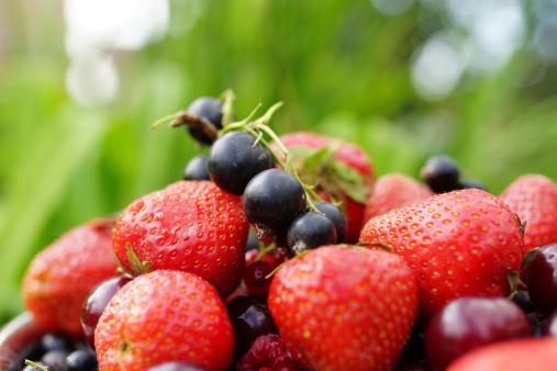 179517492, frutti bosco