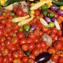 Anche un documento del Barilla Food and Nutrition Center (BFNC) sostiene la favola  del 30% di spreco domestico