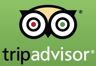 tripadvisor verde logo