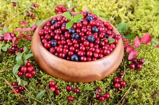 frutti bosco185854226