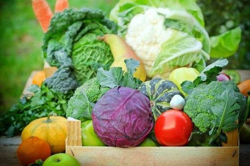 raccomandazioni degli om per una dieta equilibrata in inglese
