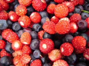 Allerta in Europa per i frutti di bosco 94491231