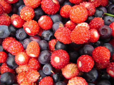 frutti bosco 94491231