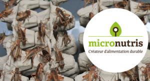 micronutris insetti francia