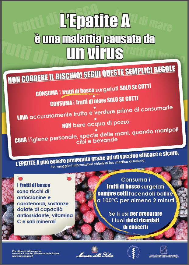 locandina ministero epatite frutti bosco dic 2013
