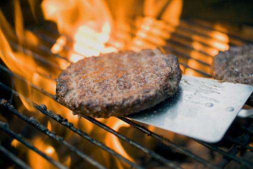 carne bovina hamburger