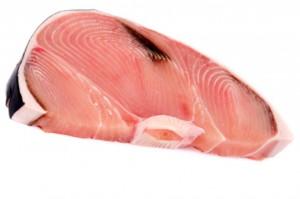pesce filetti squalo mako smeriglio  91505367