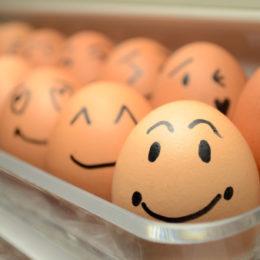 allerta alimentare italiano uova allerta 138053525