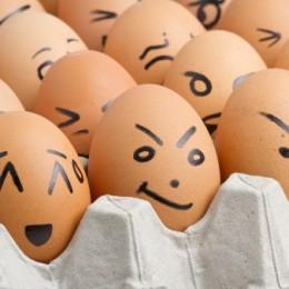 allerta alimentare italiano uova allerta 177534603