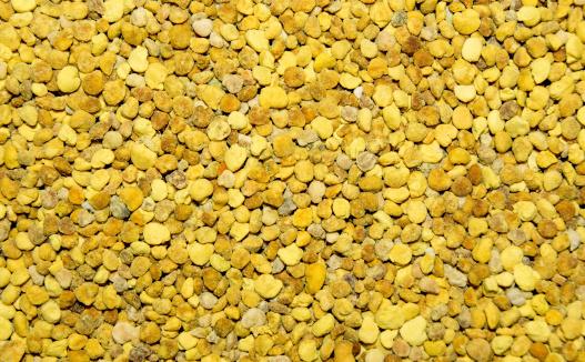 polline 454069545