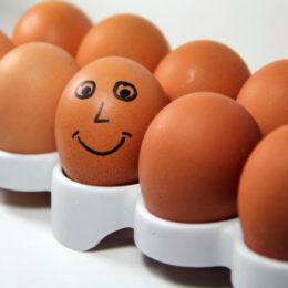 allerta alimentare italiano uova allerta 470224521