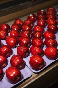 packaging mele 92572493
