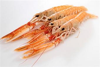 allerta acqua ossigenata scampi pesce 179251005 solfiti