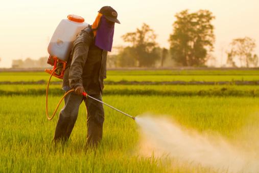 erbicida pesticida 468867687
