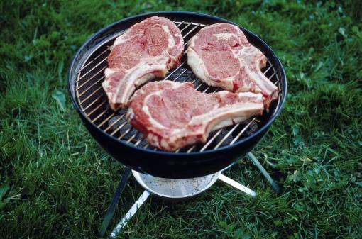 allerta smeriglio barbecue 122400446