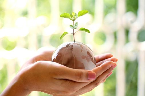 notizie dal mondo sostenibilita 158534381