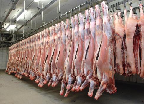 carne  macello  147274170