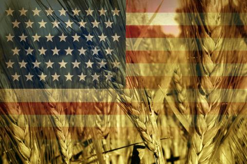 ogm america USA agricoltura 187452523