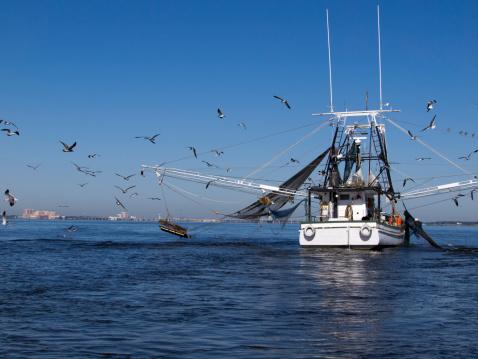 pesca 156837608