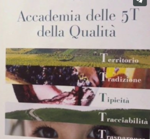grom accademia 5t