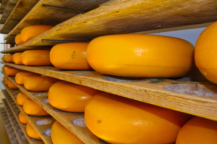 formaggio iStock_000018304118_Small