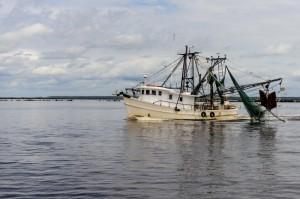 Schiavi in Thailandia pesca