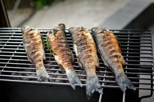 Sea bass barbecue Enterotossina