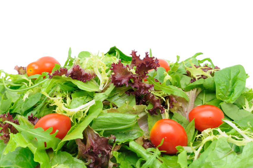 insalate pronte in busta  prodotti di quarta gamma