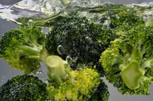 verdura broccoli iStock_000009670311_Small