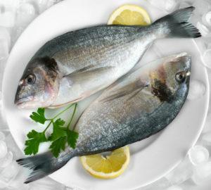orata pesce iStock_000008273828_Small