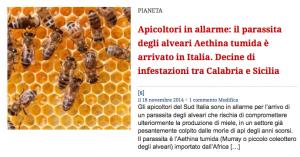 api italiane
