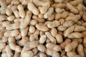 arachidi allergene