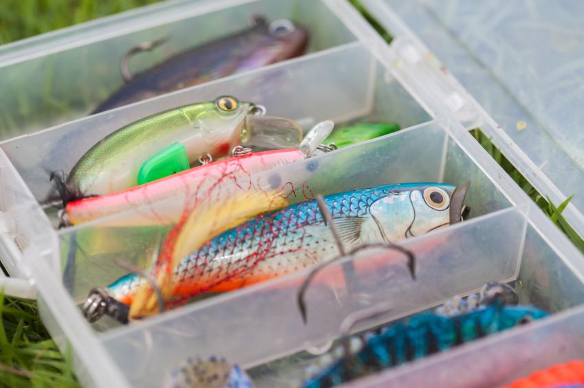 pesca amatoriale