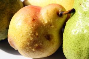 pera frutta iStock_000038420854_Small